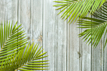 Wall Mural - Creative nature layout made of tropical leaves. Summer concept. Palm leaf on wood table. Nature beach background layout with free text space.