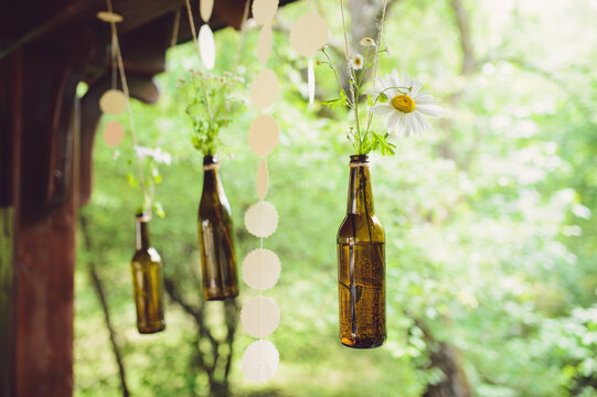 camomiles in hanging bottles