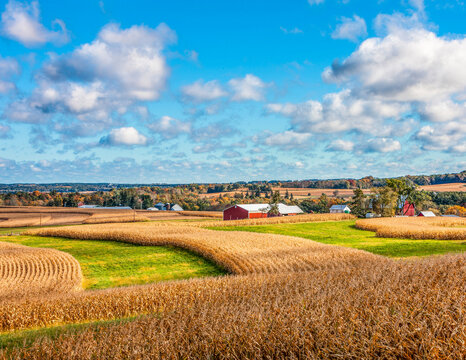 Fall Corn fields Baraboo Hills Wisconsin
