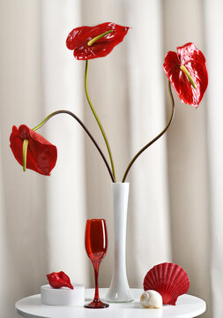 Still life in red and white colors