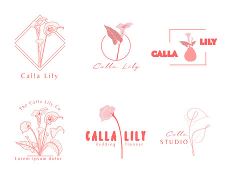 Calla Lily logo template. Botanical and flower logo.