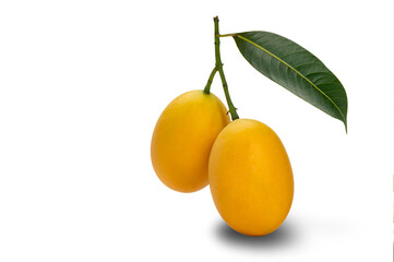Fototapete - Ripe Marian Plum with leaf isolated on white background with clipping path. Sweet yellow marian plum the tropical fruit ripen in summer season.