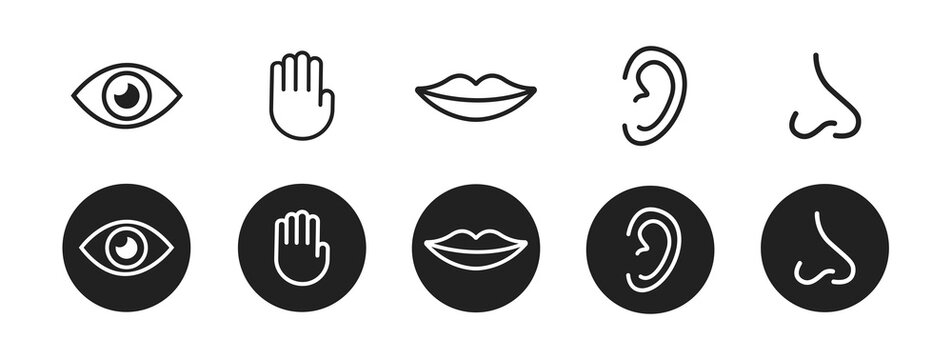 Five senses vector icons set. vision, hearing, touch, taste, smell