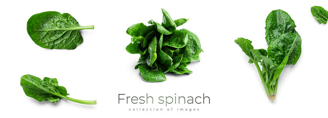 Fresh spinach on a white background
