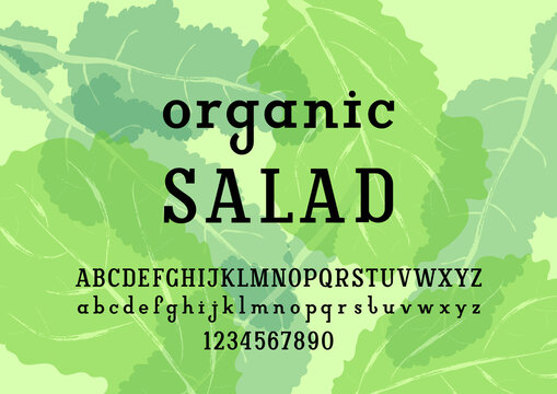 Modern slab serif font, original regular alphabet, trendy uppercase and lowercase letters from A to Z and numbers from 0 to 9, vector illustration 10EPS