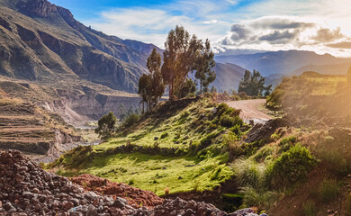 Sunrise light in road into Colca Canyon region in Peru. Southamerican valley, landscape and mountains