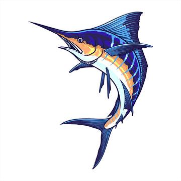 realistic sword fish. illustration