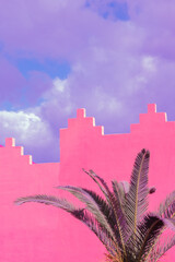 Fashion tropical urban location. Pink Wall. Palm. Blue summer sky. Canary islands. Travel advertising banner wallpaper