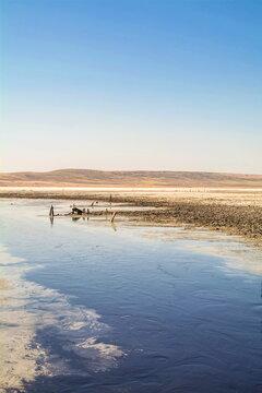 Healing mud lake Chokrak in Crimea