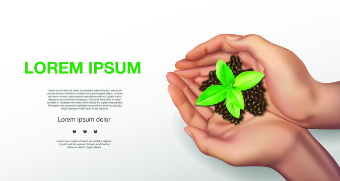 Human realistic hands hold and care for a young green plant, Seedlings grow from abundant soil, plant a tree, reduce global warming, grow a tree, love nature, World Environment Day Vector