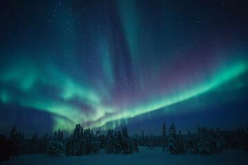 sky with aurora and stars
