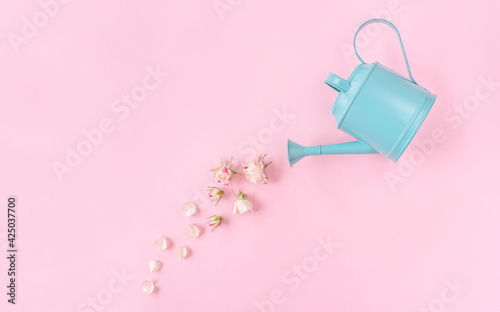 Garden watering can with rose petals and buds on pink background. Creative spring bloom concept with copy space. Women's day, wedding, Mother's day or anniversary idea. Flat lay, top view.