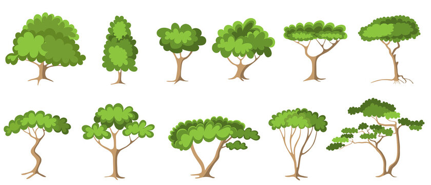 Set of green trees with foliage - forest trees, painted in modern flat cardboard style. Garden log icon, vector illustration on white isolated background.