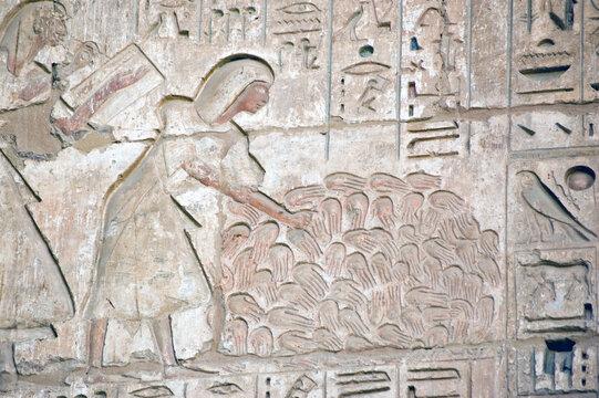 Ancient Egyptian war dead