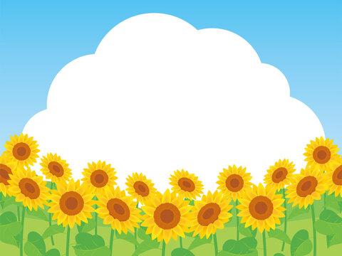 Sunflower field background ひまわり畑の背景