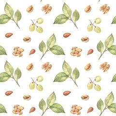 Noix, raisins et feuilles sur fond isolé blanc. Éléments dessinés à la main à l& 39 aquarelle, motif harmonieux de style ferme. Pour le tissu, la décoration de cuisine, le design de café, le papier d& 39 emballage, les papiers peints.