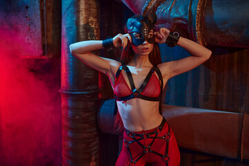 Sexy woman poses in bdsm suit and leather mask