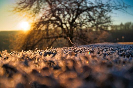 Eisiger Sonnenaufgang