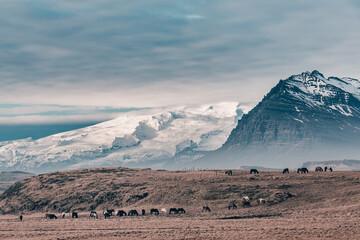 Islandia  - fototapety na wymiar
