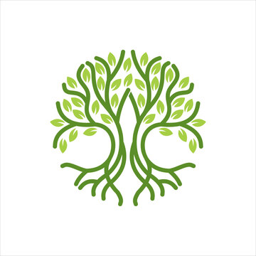 Vintage tree silhouette logo illustration, Abstract golden tree logo on a white background. Modern illustration. Isolated vector. Great for emblem, monogram, invitation, flyer, menu, brochure or any d