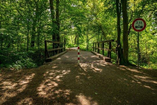 Wooden bridge over the Rottbach in the Wambachtal forest in Muelheim an der Ruhr, North Rhine-Westphalia, Germany