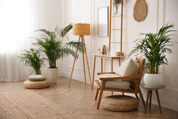 Beautiful potted house plants in stylish living room - fototapety na wymiar