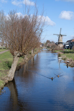 Bergambacht The Netherlands, 26 february 2021, Windmill Den Arend dating from 1869 in a farm landscape with water