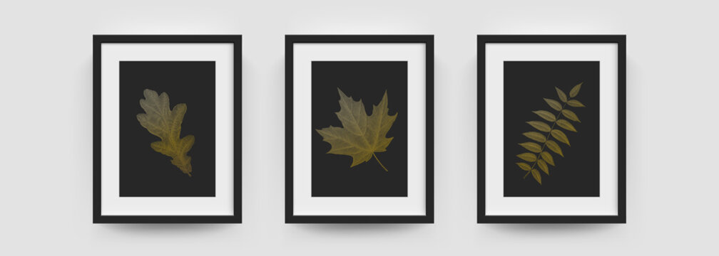 Photo frames mockup, wall pictures or posters vector modern white and black box. Photo frame mockups in 3D, vertical A4 or A4 photograph frame with leaf foliage