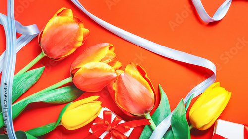 Red tulip flower on orange background from above. Spring bud bouquet creative frame design. Mother's Day, Birthday, Valentine's Day, Women's Day, Celebration Concept.