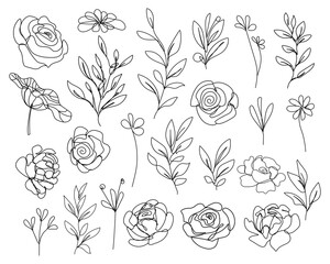 Continuous Line Drawing Set Of Flowers, Leaves, Plants Black Sketch Isolated on White Background. Simple Flowers One Line Illustration Set. Minimalist Botanical Drawing. Vector EPS 10.