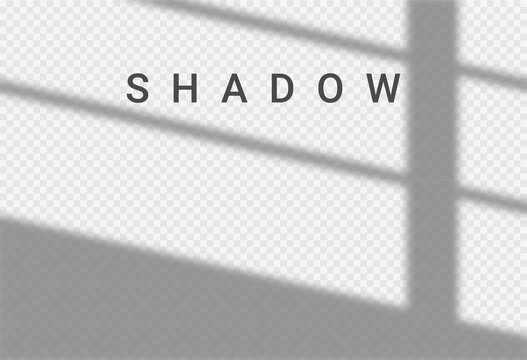 Shadow light overlay window wall scene mockup. Shadow transparent background