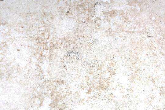 Peeling floor with fungi, texture background.