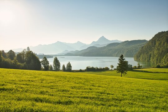 a large green field with a lake and mountains in the background