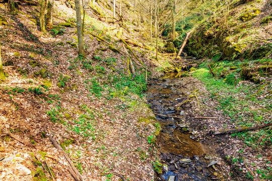 An der Mündung des Wäschbaches in den Dörsbach