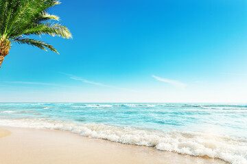 Tropic Beach with Palm Background. Summer Holiday Tropical Travel Resort. Paradise Beach Vacation....