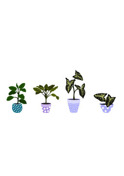 Set of four green houseplants into polka dot pots separated from each other on one layer of svg file