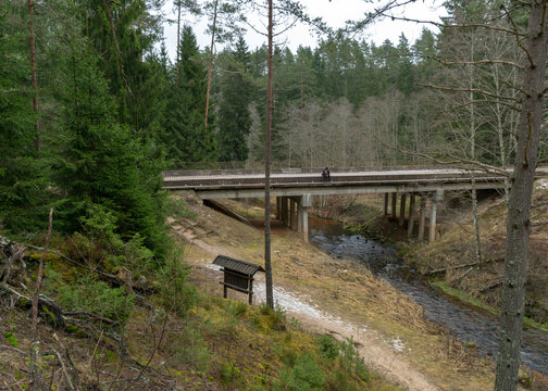 bridge over a small wild river, with many bends, beautiful conifers overgrown river banks, autumn time in nature