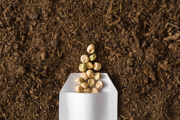 Fototapeta One white opened paper pack of dry pea seeds on fresh dark soil background. Closeup. Preparation for garden season in early spring. Top down view. obraz