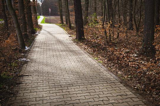 Radweg durch einen Wald