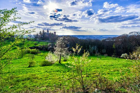 Frühling im Siebengebirge