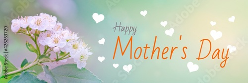 Congratulations Happy Mother's Day! Stylish soft colors. Beautiful present concept.
