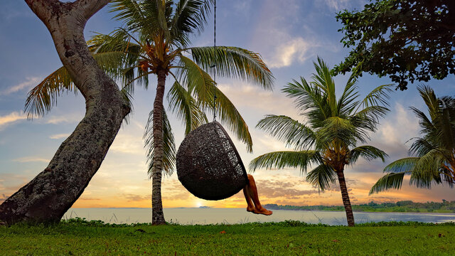 Dreaming in an escape capsule surrounded by tropical palms to find your self