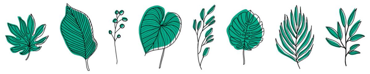 Hand drawn chalkboard design elements. Vector illustration. Nature elements