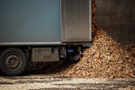 the truck unloads tons of wood waste. sawdust and shavings are stored for further processing. mountain of waste wood