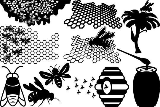 Honey Bees SVG Cut Files | Bee Hive Silhouette Bundle