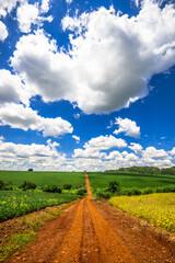 Fototapeta country road. beautiful rural landscape