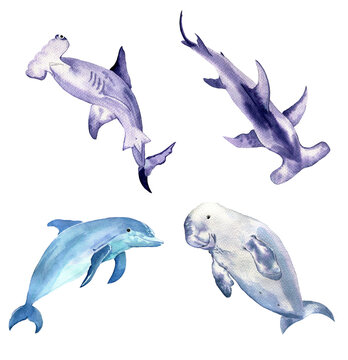 Watercolor set of rare sea animals. Dugong, dolphin and sharks isolated on white