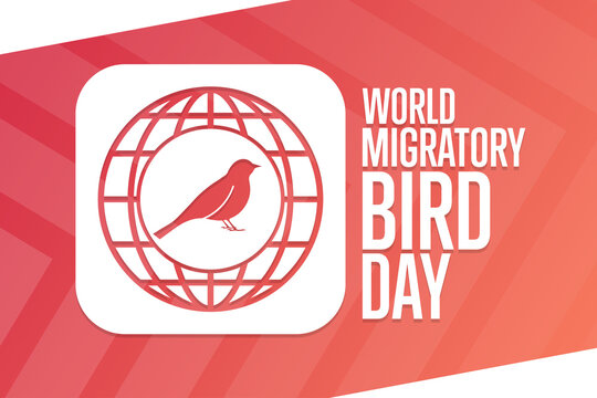 World Migratory Bird Day. Holiday concept. Template for background, banner, card, poster with text inscription. Vector EPS10 illustration.