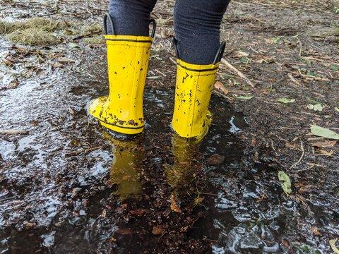 yellow rain boots in flooded marsh