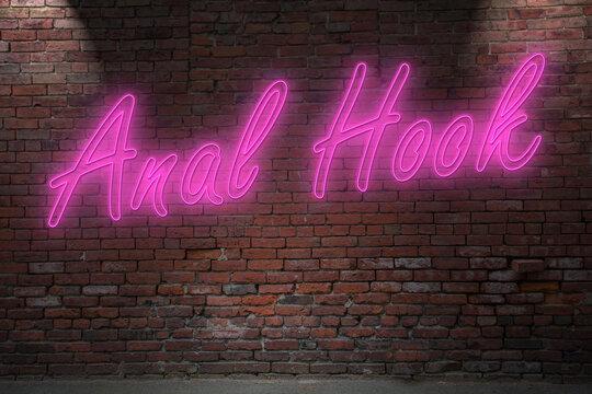 Neon anal hook (in german Analhaken) lettering on Brick Wall at night